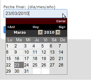 The input field in its full glory when translated to Spanish