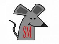 social-mice